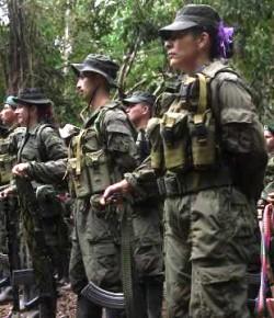 Een bezoek in het kampement van de FARC (video)