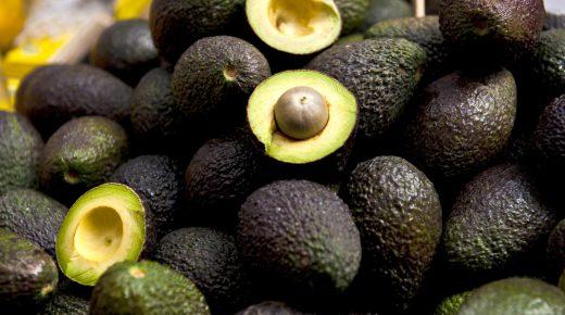 Nederland is grootste afnemer van de Colombiaanse avocado