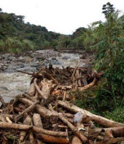 Hevige regenval veroorzaken noodsituaties in vier gemeenten in Magdalena