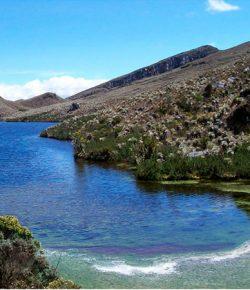 De regering hoopt voor kerst natuurparken vrij van cocaplanten te hebben