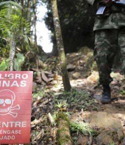 Leger vernietigt mijnenveld ELN in Catatumbo