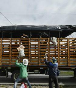 Migrantenstroom vanuit Venezuela kost Colombia ongeveer 1,3 miljard dollar