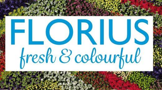 Florius start bloemenkwekerij in Colombia