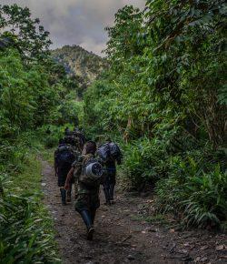 Colombia vraagt Venezuela om de aanwezigheid van bepaalde ELN-rebellen te verifiëren